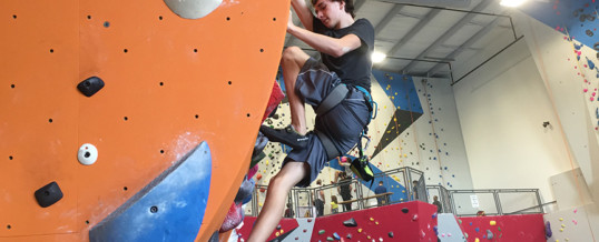 Summer Adult Climbing League